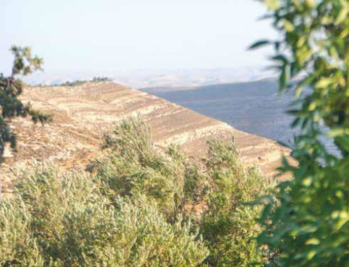 Finding Our Place in Eretz Yisroel