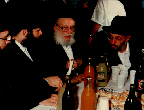 How We Made It in Eretz Yisroel